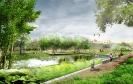 Природный парк в Мневниковской пойме